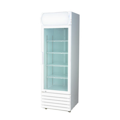 LG-540GE Large Single Glass Door Colourbond Upright Drink Fridge